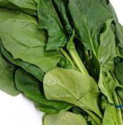 Fresh Spinach 0.9